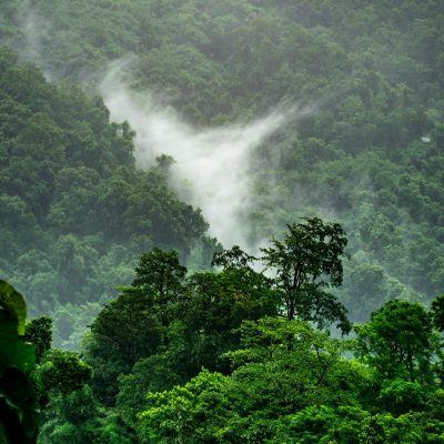 boudhayan-bardhan-60tataLkJ0U-unsplash-scaled.jpg